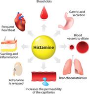 Oral Antihistamines